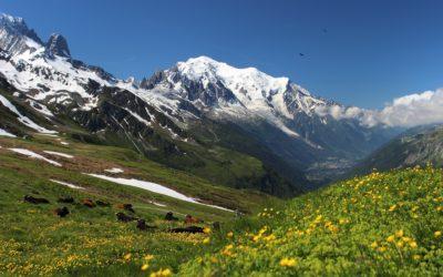 Pure Altitude : la montagne, source de beauté